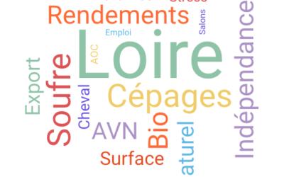 Vignerons naturels de Loire: qui êtes vous?