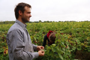 David vendange, devenir vigneron, Muscadet