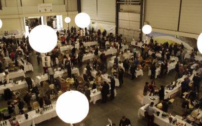 Angers-Saumur : la galaxie des salons des vins [Dataviz]